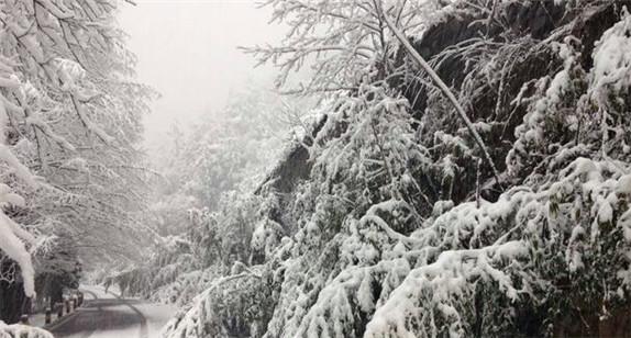 """大雪来袭,十堰铁通这批""""暖男""""在行动"""
